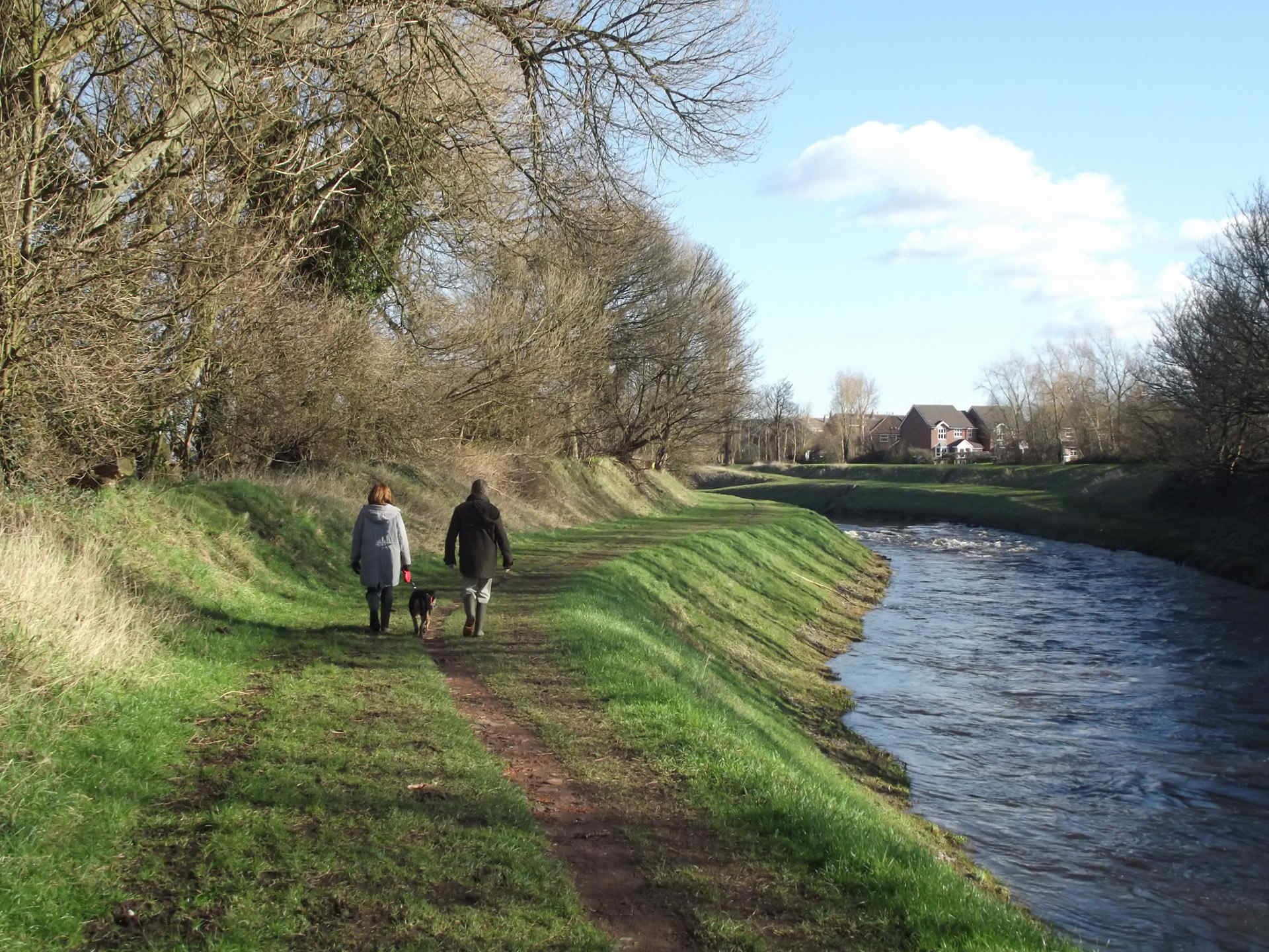 A man and woman in middle distance walk with a dog along a river bank