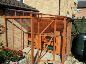 Clean hutches for rabbit boarding